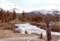 ヨセミテ国立公園ツールミネミドウの小川にて