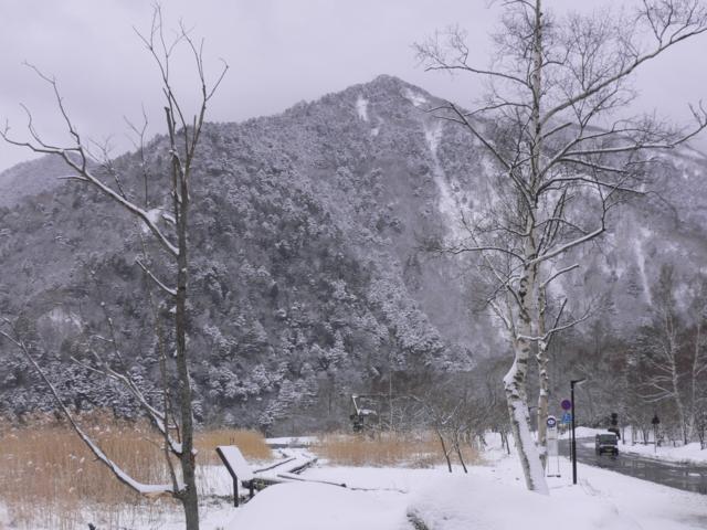 湯ノ湖周辺
