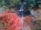 南禅寺 三門からの風景1