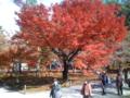 南禅寺 三門前の広場1
