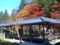 南禅寺 大方丈庭園2