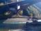 保津峡駅の下の風景