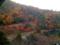 千光寺・大悲閣の窓から2