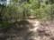 戸石城への道1