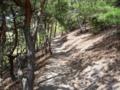 戸石城への道2
