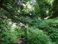 高取城跡への道