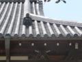浄土院の鬼瓦
