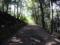 大吉山展望台への道