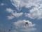 凧揚げ大会1