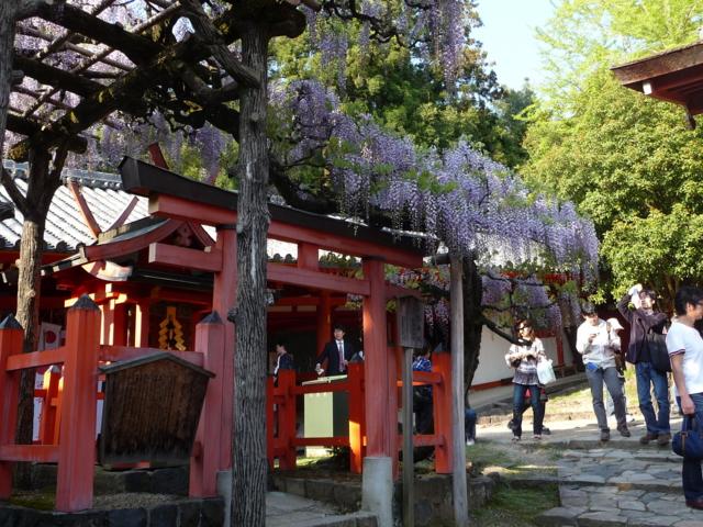 春日大社の多賀神社