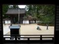 高野山・金剛峯寺4