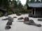 高野山・金剛峯寺の庭園3