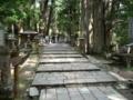 高野山・中の橋付近