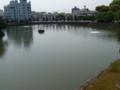 和歌山城の堀2