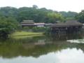玄宮園の池2