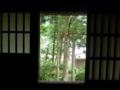 岩瀬家から外を眺めて