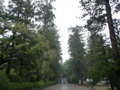 大崎八幡宮・雨の中の境内