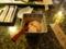 牡鹿半島で夕食10