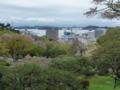 松島湾が見える