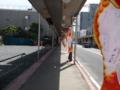 石巻商店街に登る鯉のぼり