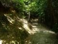 吉田郡山城への険しい道