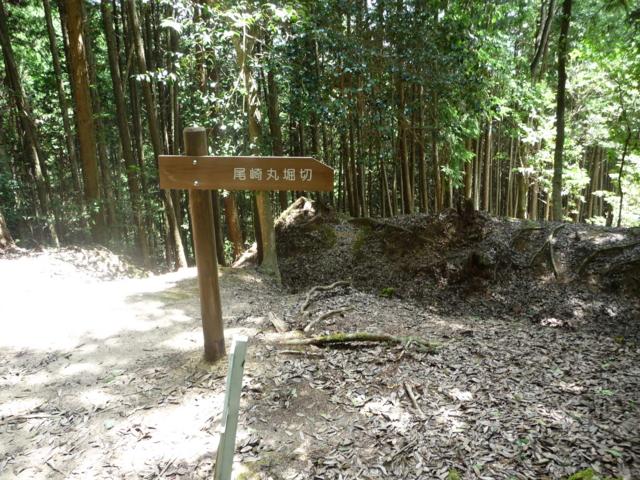 吉田郡山城 尾崎丸堀切付近