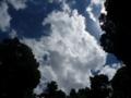 本丸付近からみた空の景色