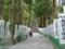 熊野本宮の参道