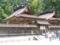熊野本宮と若宮