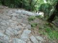 神倉神社の決死の帰り道