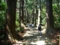 熊野那智への古道2