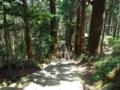 熊野那智への古道3