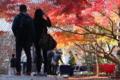 京都新聞写真コンテスト 二人の世界