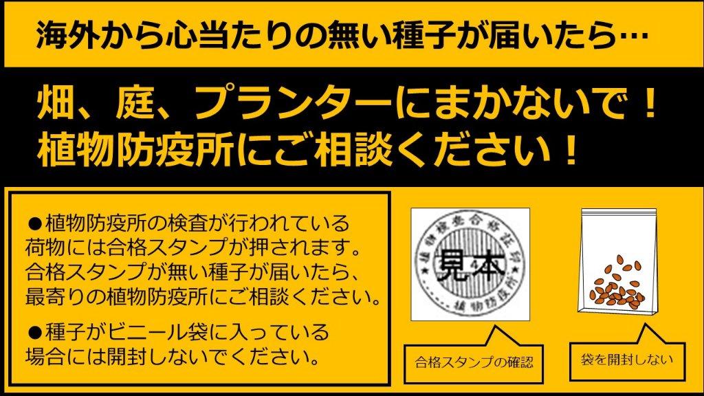 f:id:newspaper-ama:20200731202743j:plain