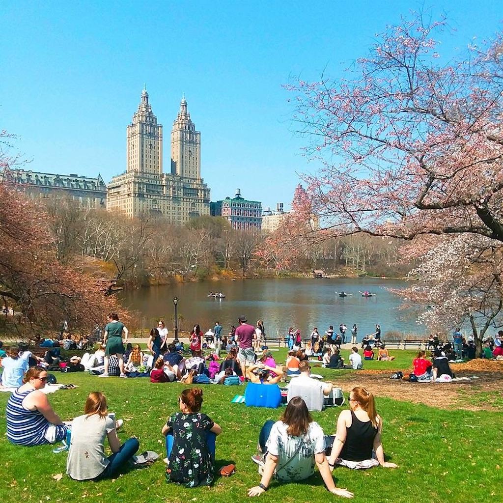 春のセントラルパーク