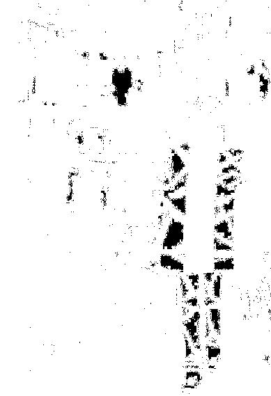 f:id:nexttriger:20170727234432p:plain