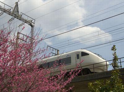 春の特急列車