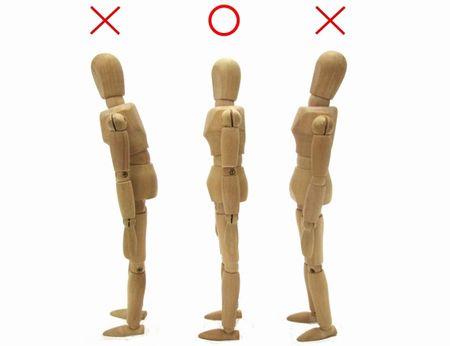 正しい姿勢の模型