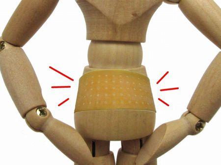 骨盤ベルトと模型