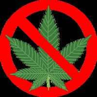 英語での大麻の断り方