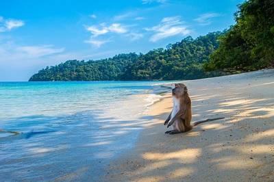 タイのビーチ、タイに移住