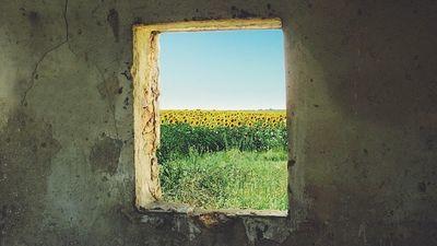 ウクライナの風景