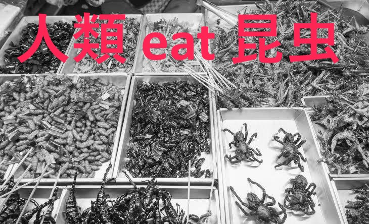 昆虫食:将来の栄養源として期待が高まる虫たち