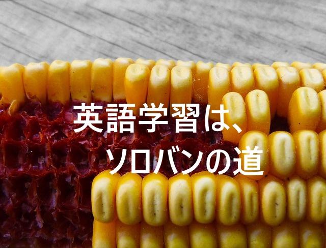 f:id:nezujiro:20180425062654j:plain