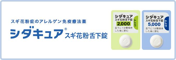 f:id:nezujiro:20180911110645j:plain