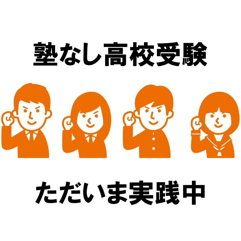 f:id:nezujiro:20190620155230j:plain