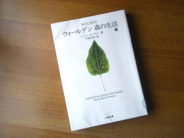 f:id:nezuminofukuro:20170605143051j:plain