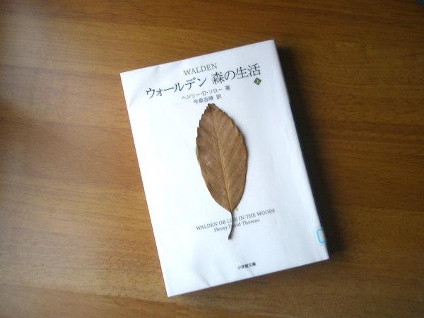 f:id:nezuminofukuro:20170605143200j:plain