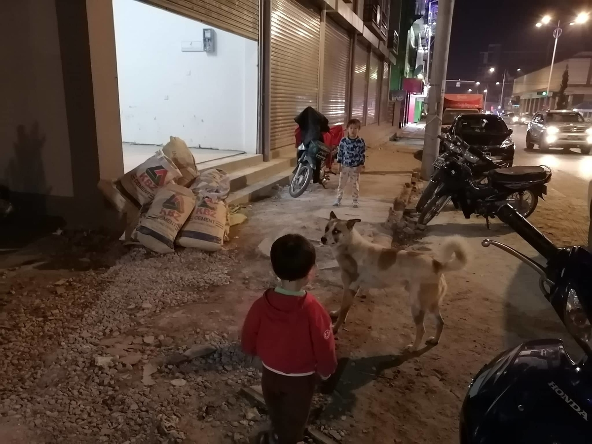 ミャンマーの犬と、近くに立つ子ども