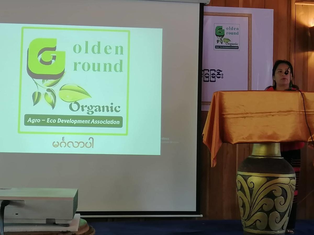 パワーポイントにロゴが投影されている。講演している女性